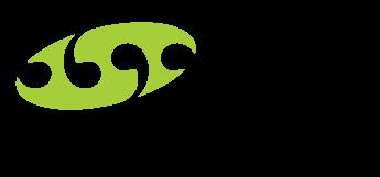 PMN Group Design & Branding - no text logo